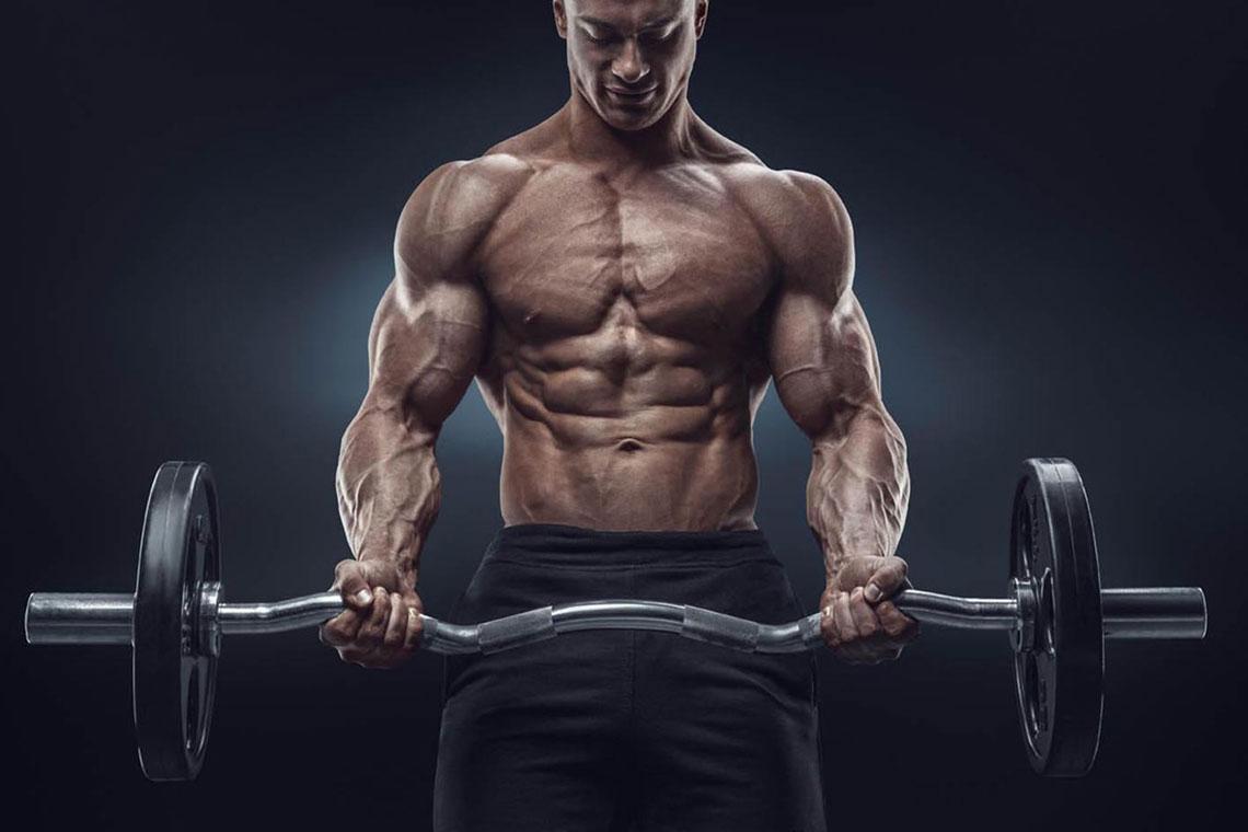Weight Lifting, Cdn Online Steroids, Medistar Steroids, Buy Steroids Canada, Online Canadian Steroids, Steroids in Canada,cdnonlinelab