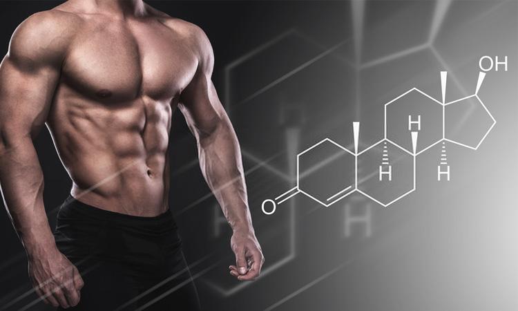 Buy Testosterone in Canada